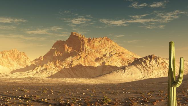 Sonoran_Desert-wallpaper